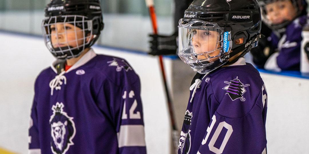 reading royals youth hockey sponsorship